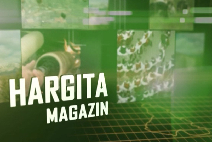 Hargita magazin 2020. december 22.