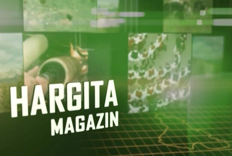 Hargita magazin 2020. október 13.