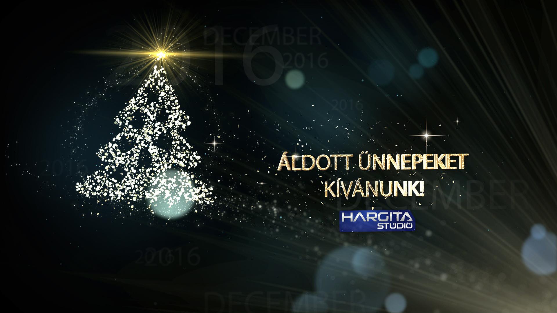Áldott ünnepeket kívánunk!
